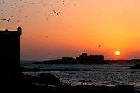 Morocco _ Essaouira _ Skala du port and the Mogador island