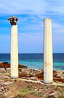 Italy _ Sardinia _ West Coast Region _ Antique Site _ Tharros _ Corinthian Columns