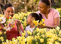 African grandmother, mother and daughter picking flowers