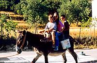 Greece _ Crete _ Children on a donkey _ Lassithi Plateau