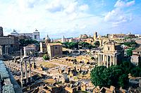 Italy _ Rome _ Roman Forum and the Palatine