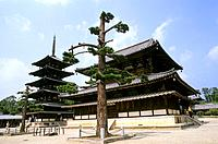 Japan _ The west of Honshu _ Nara _ Horyu ji Temple