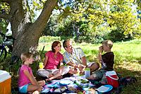 Family of four having picnic, boy 8-10 taking photograph of parents