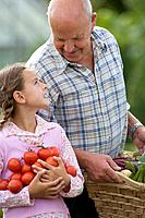Grandfather and granddaughter 8-10 with tomatoes and vegetables