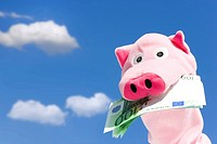 Piggy bank with dollar bill in mouth, low angle view