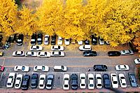 Parking Lot,Jamsil,Songpa_gu,Seoul,Korea
