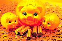 Piggy Bank,Korean Currency