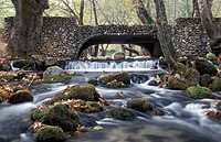 Saint Nicolas Park, River Arapitsa, bridge, Naoussa, Macedonia Central, Greece