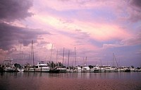 View of boats, Miami, Florida, United States