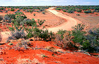 Winding road through red sand dunes. Outback. Australia