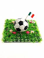 Soccer Ball with Italian Flag (thumbnail)