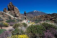Spain, Europe, Tenerife island, Pico del Teide, Canaries, Europe, Africa, Canary Islands, Los Roques, island, couple,