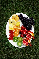Plastic Fruit on Plate