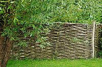 Willow fence (thumbnail)