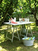 Watermelon slices with beverages and potted plant on table in garden