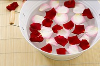 Rose petals in dish with water
