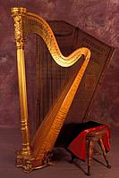 Harp in front of case