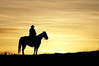 A cowboy and his horse silhoutted, Shell, Wyoming. Usa