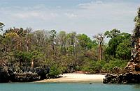 A small beaches surrounded by baobabs and tsingy rocks on the north west coast