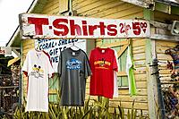 Shell Shack sells Road side exotic art in Key Largo, Florida, USA