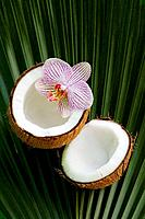 Opened coconut with orchid flower on a palm leaf