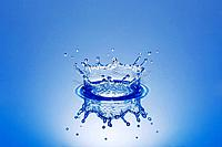 Splash crown on water surface