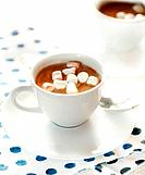 Hot chocolate with mini marshmallows and spoon