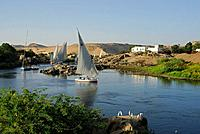 sailing boats fellucas on the Nile, Aswan, Egypt, Africa