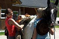Two women saddling a horse at stables, Muehlviertel, Upper Austria, Austria