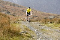 A man cycling (thumbnail)