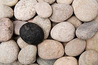 One black pebble amongst other pebbles