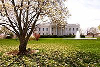 The White House, Washington D C , U S A