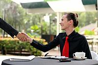 Businesswoman shaking hands with another business person