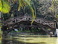 belo horizonte mg lake under a bridge in a green vegetation of a park