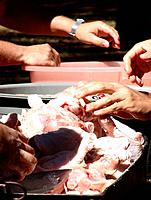 people preparing the meat for barbecue