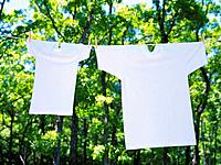 Two White T-Shirts that are Hung Outside in Nature, High Angle View, Differential Focus