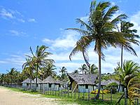 turttle care kiosks from bahia beach