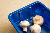 Freshly picked whole white mushrooms in a blue plastic packaging tray