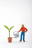 Man watering a potted plant