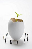 Seedling growing from an animal egg with businessmen figurines surrounding it