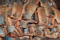 Matie fillets, raw fish fillets, Matie