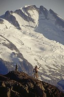 Mountain biking, Whistler Mountain, BC