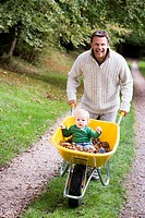 Father pushing baby son in wheelbarrow