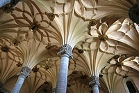 Vaults of the 'Lonja' (old exchange market, 16th century), Zaragoza. Aragon, Spain