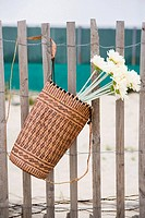 Flower basket hanging on a fence