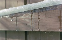 Snow dripping on wood