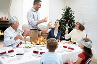 Family toasting at table at christmas dinner