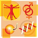 Montage illustration about gene therapy and engineering containing a vitruvian man, male and female symbols, DNA, and sperm fertilizing an egg