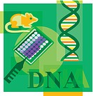 Montage illustration about DNA research containing a mouse, DNA, and scientific testing