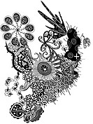 Black and white floral pattern and shapes (thumbnail)